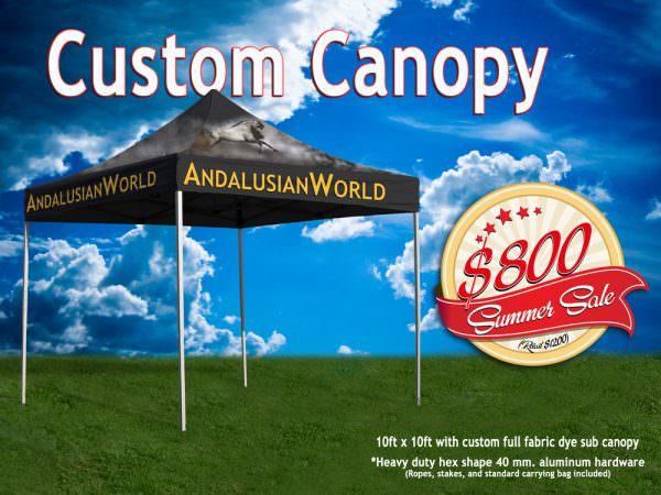 Custom Printed Canopy